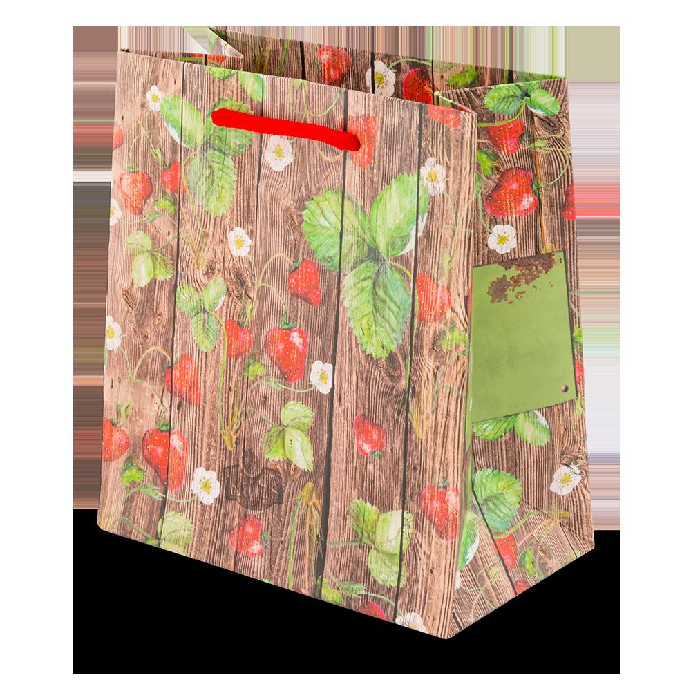 """Geschenktüte """"Erdbeerpflanze"""" groß"""